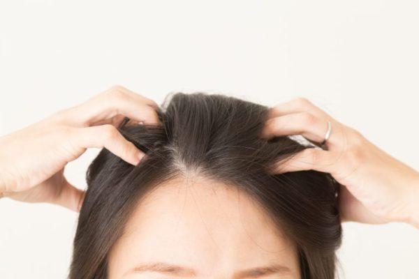 頭皮 硬い 育毛