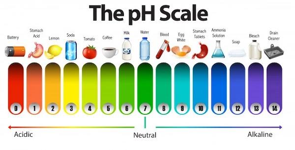 髪の毛 pH
